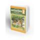 Matematika 2, udžbenik sa radnim listovima ( 2b ) za drugi razred osnovne škole  *Joksimović